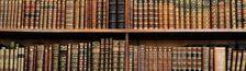 Cover Les meilleurs livres du XIX° siècle
