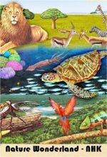 Affiche Nature Wonderland (NHK)