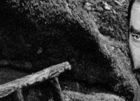 Cover Les_meilleurs_films_avec_Toshiro_Mifune
