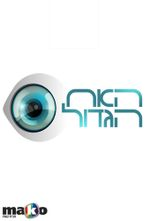 Affiche Big Brother IL