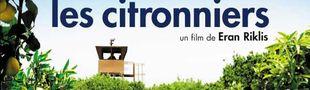 Affiche Les Citronniers