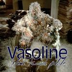 Pochette Vasoline (Single)