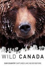 Affiche Wild Canada