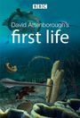 Affiche First Life with David Attenborough