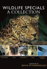 Affiche Wildlife Specials