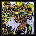 Pochette Tropicalia Essentials