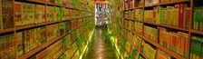 Cover Mangavore : lu, en pleine lecture et à lire