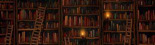 Cover Comme j'aime bien lire et que j'aimerais bien faire un p'tit bilan à la fin de l'année voici ma liste des livres lus et relus en 2016