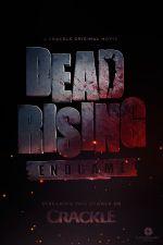 Affiche Dead Rising : Endgame