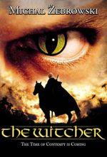 Affiche Le Sorceleur