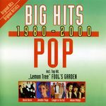 Pochette Big Hits 1980–2000: Pop