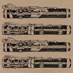 Pochette Lucho Bermúdez y Su Orquesta (EP)