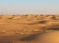 Cover Les_meilleurs_films_se_deroulant_dans_le_desert