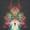 Avatar Mandnox