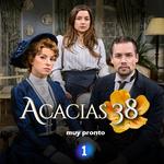 Affiche Acacias 38