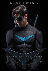 Affiche Nightwing: The Series