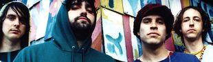 Cover Les meilleurs albums d'Animal Collective