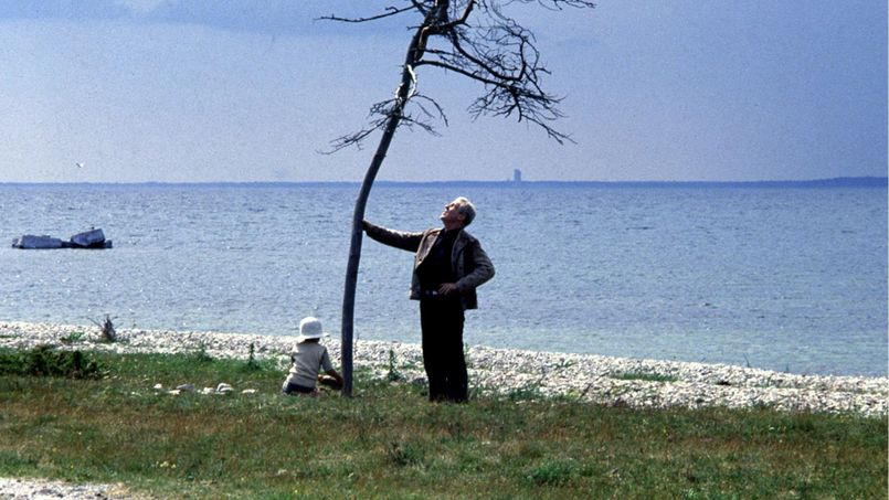 Illustration Andreï Tarkovski : un cinéaste organique et végétal
