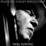 Pochette Peaceful Valley Boulevard (Single)