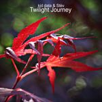 Pochette Twilight Journey (Single)