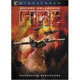 Affiche Fire - Pyromane