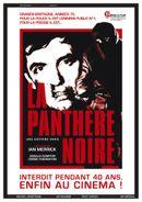Affiche La Panthère noire
