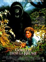 Affiche Gorilles dans la brume