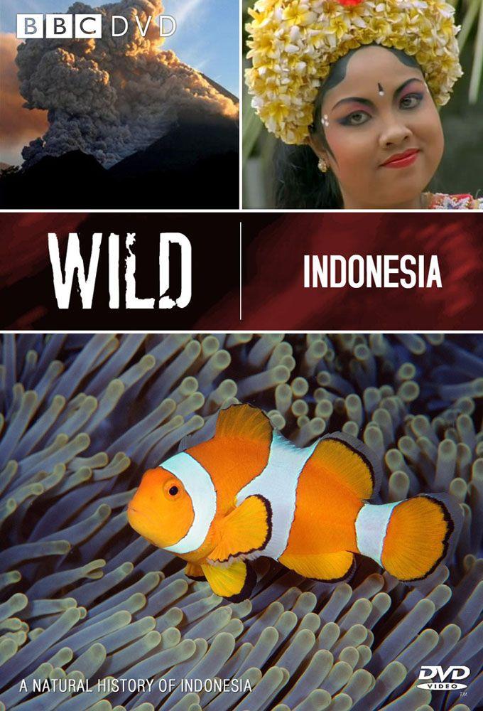 Wild Indonesia