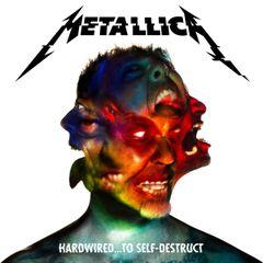 Pochette Hardwired… to Self‐Destruct