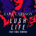 Pochette Lush Life (Remixes)