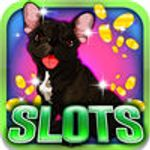 Jaquette The Barking Slots: Bet on the beautiful Bulldog