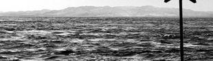 Couverture L'opticien de Lampedusa