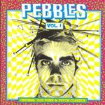 Pochette Pebbles, Volume 1: Original Artyfacts From the First Punk Era