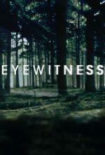 Affiche Eyewitness