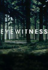 Affiche Eyewitness (US)