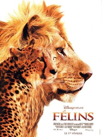 Top des documentaires animaliers