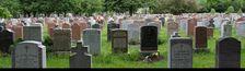 Cover Le cimetière de mon backlog