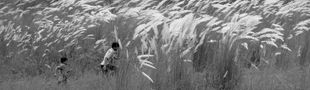 Cover Panthéon asiatique & moyen-oriental : Satyajit Ray