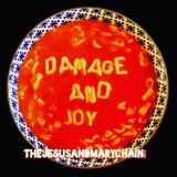 Pochette Damage and Joy