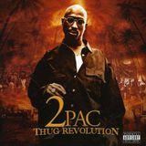 Pochette Thug Revolution