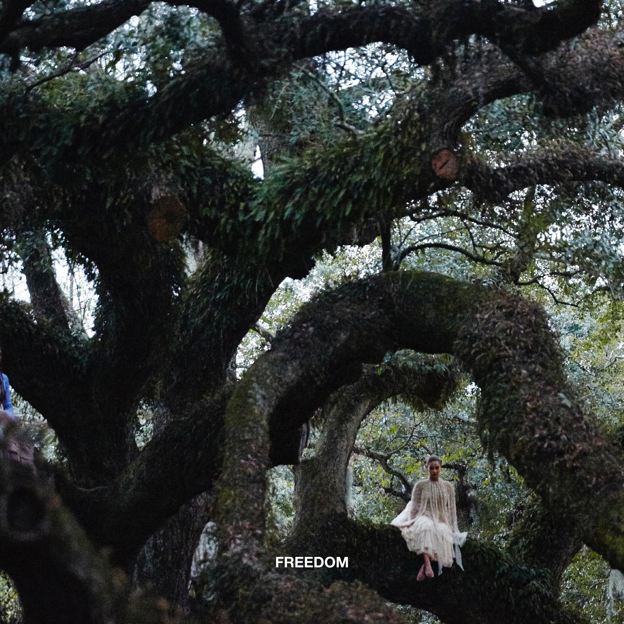 Freedom (Single) - Beyoncé et Kendrick Lamar - SensCritique