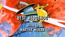 screenshots Best Hedgehog
