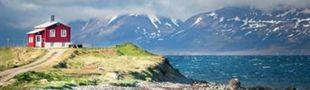 Cover Les Films d'horizons diverses (vus & envies) - Islande, Finlande, Israël & co