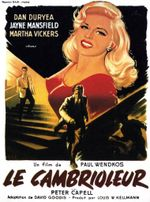 Affiche Le Cambrioleur