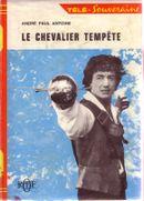 Affiche Chevalier Tempete