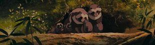 Cover Introduction à l'animation japonaise en 10 films