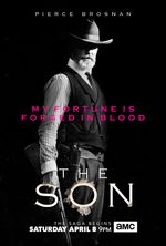 Affiche The Son