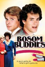 Affiche Bosom Buddies