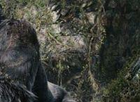 Cover Les_meilleurs_films_de_la_saga_King_Kong