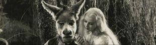 Cover Ma cinéphilie occulte : reliquaire d'inconnus